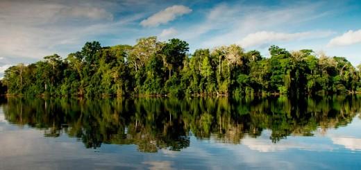 Salvador Lake in Manu National Park