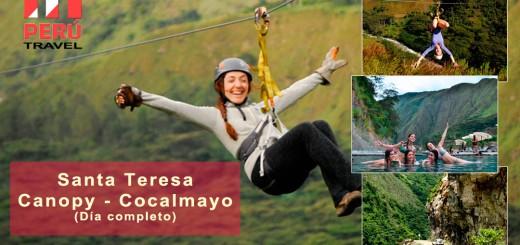 Santa Teresa - Canopy - Cocalmayo