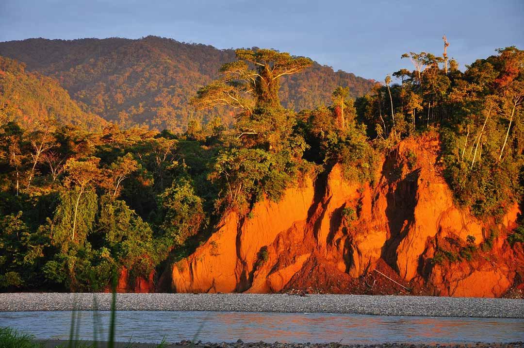 Reserva Nacional Manu