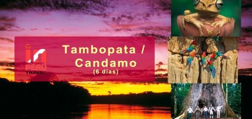 Reserva Nacional Tambopata Candamo - Madre de Dios