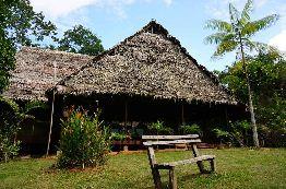 Amazonas Sinchicuy
